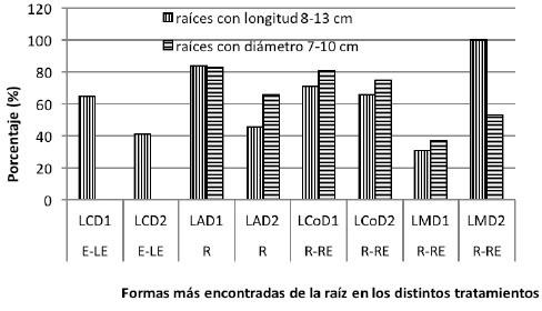Efecto de sistemas de labranza y densidades de siembra de batata sobre el porcentaje de raíces tuberosas, con tamaños de preferencia. Venezuela, 2014.