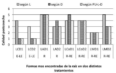 Efecto de sistemas de labranza y densidades de siembra de  batata sobre el nivel de calidad postcosecha de raíces tuberosas.Venezuela. 2014.