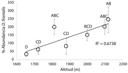 View of Altitudinal abundance of Dendroctonus frontalis