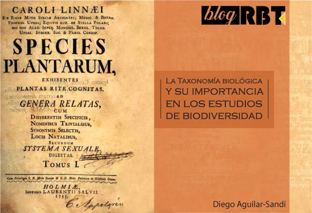 Imagen de Species plantarum, Carlos Linneo