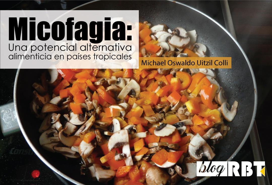 Comida preparada con hongos comestibles. Fotografía de acceso libre (Dominio público)