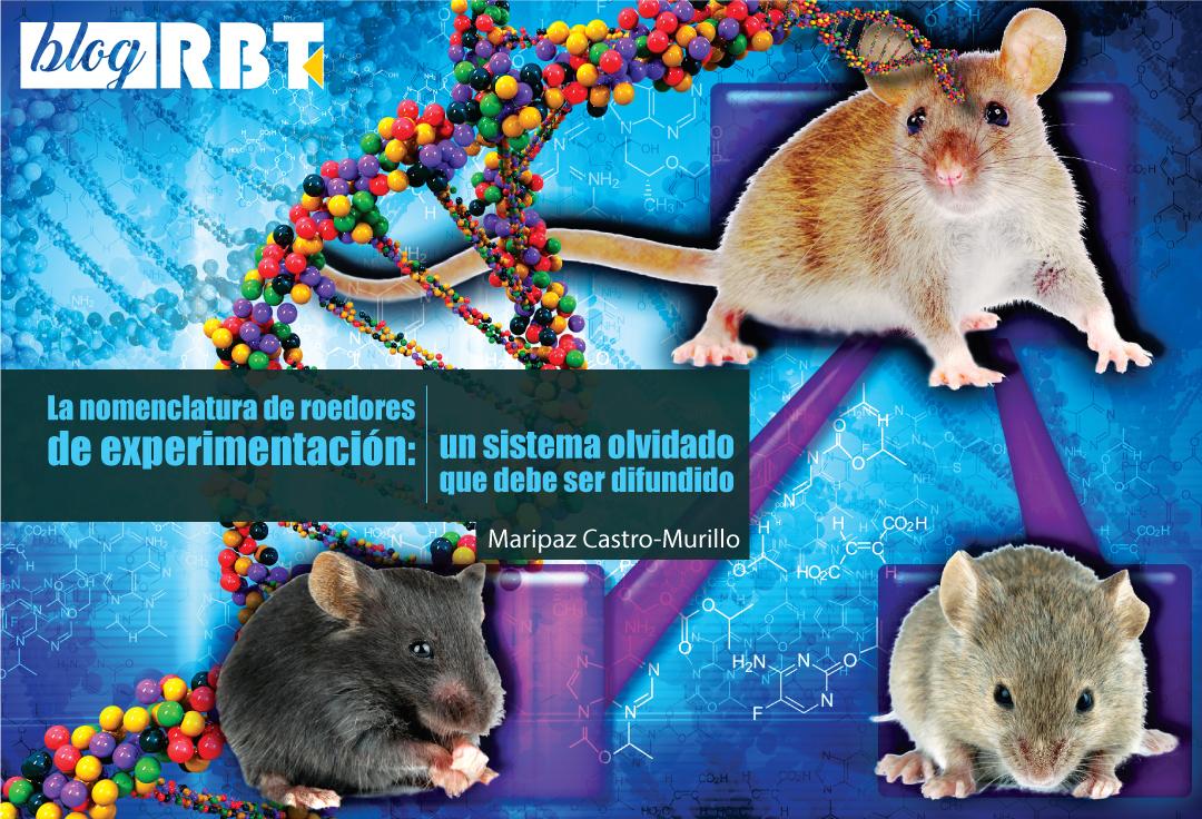 Ilustración de expresión génica en ratones. Crédito: Ernesto del Aguila III, National Human Genome Research Institute (CC BY 2.0)