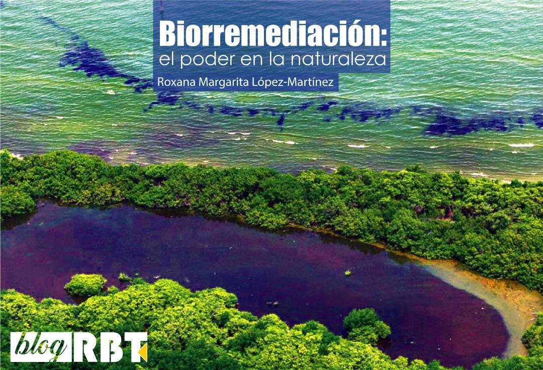 Derrame petrolero en el lago de Maracaibo, Venezuela (2010). Fuente: Globovisión (CC BY-NC 2.0)
