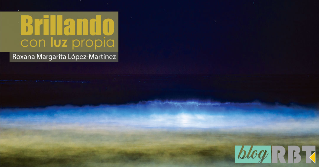 Plancton bioluminiscente en la costa de Australia. Fuente: Chad Ajamian (CC BY-NC 2.0)