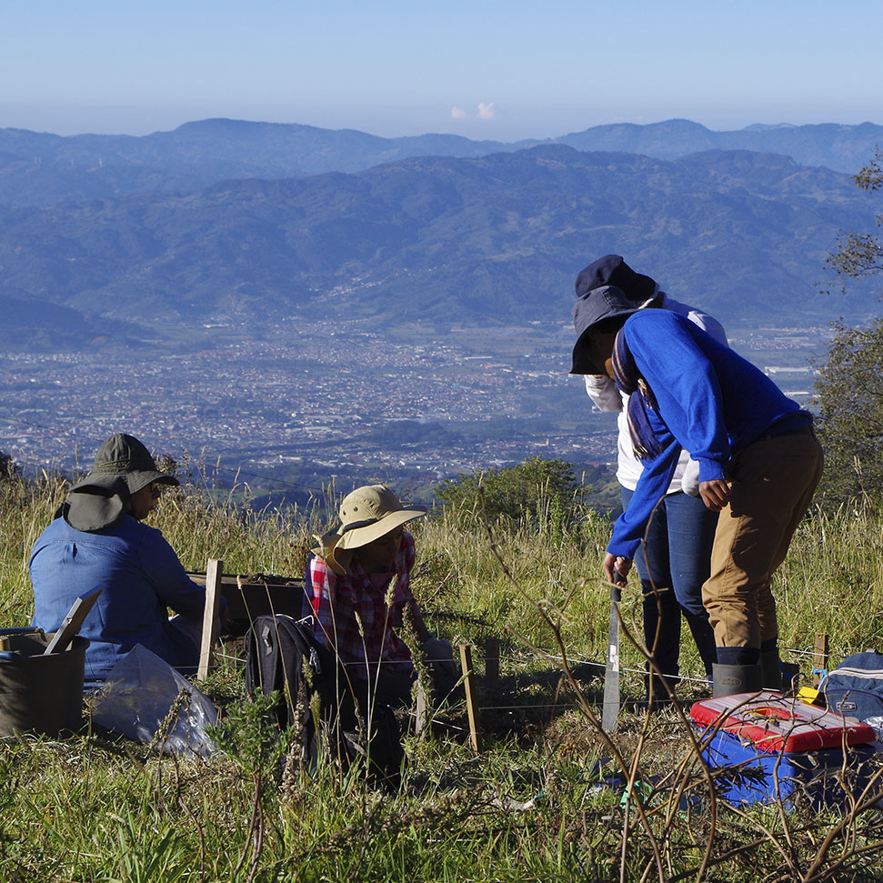 Excavaciones durante la Práctica de Investigación en Arqueología en el año 2017, el valle de El Guarco (Cartago) al fondo