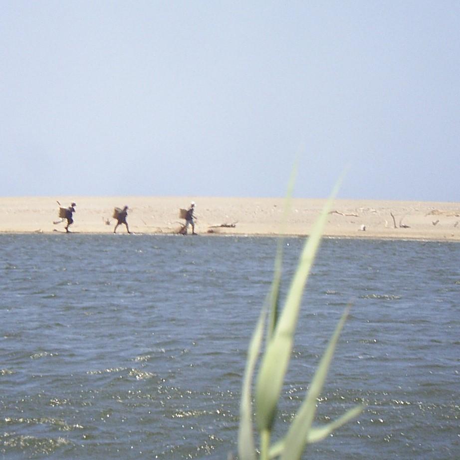 Paso mareño e Ikoots (huaves) (https://www.flickr.com/photos/ishiba/219538096)
